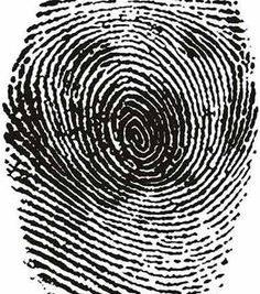 fingerprint-illusion.jpg