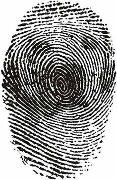 fingerprint illusion