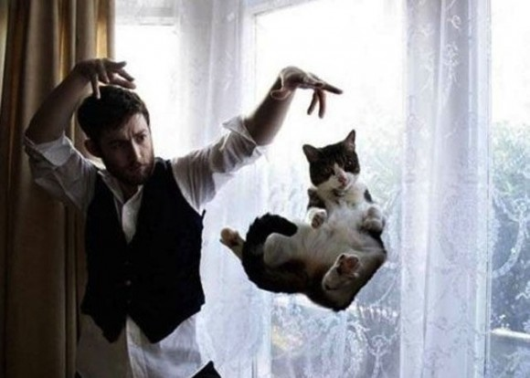 sihirbaz ve kedi