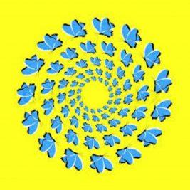 dönen kelebekler